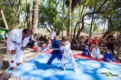 meninos judo