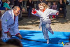 pulo judo