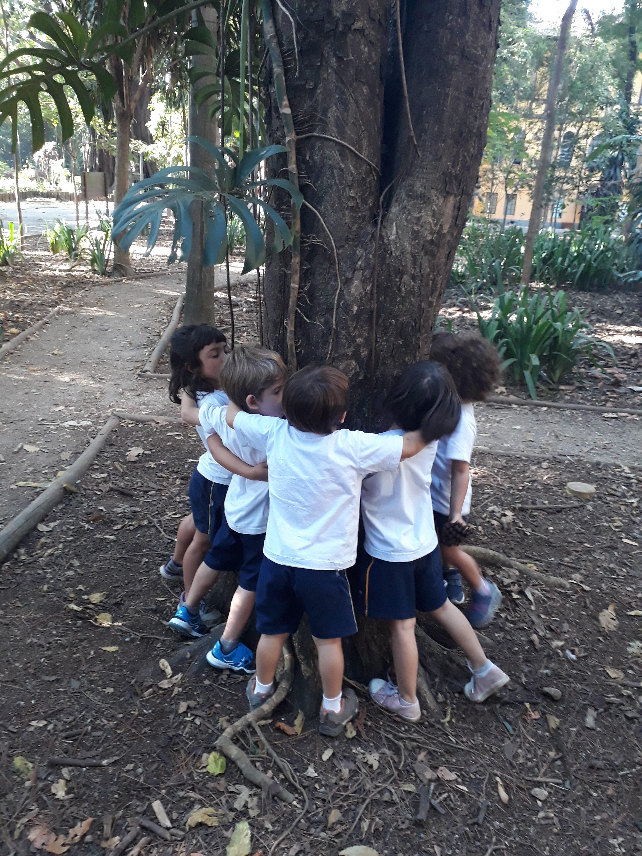 Crianças do GIII visitam parque e desvendam os mistérios das árvores
